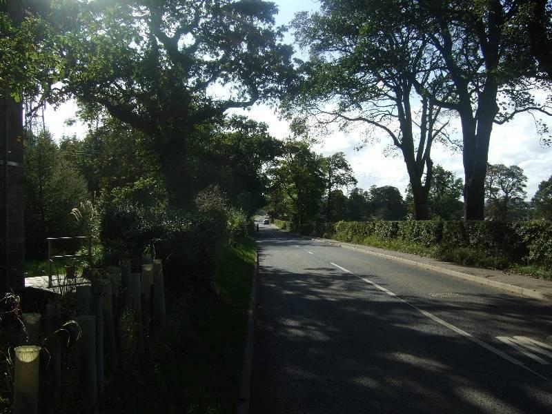 2011_09240029