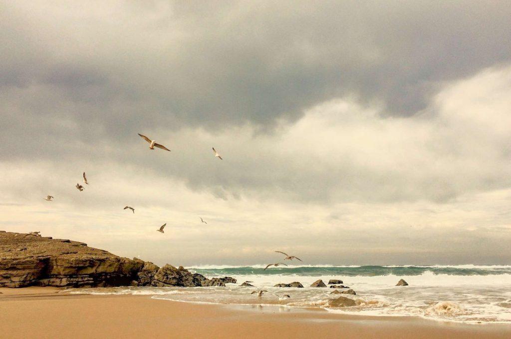 seaside-1149834_1920